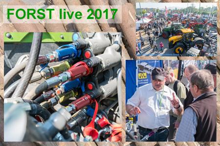 Szenen der Forst Live 2017